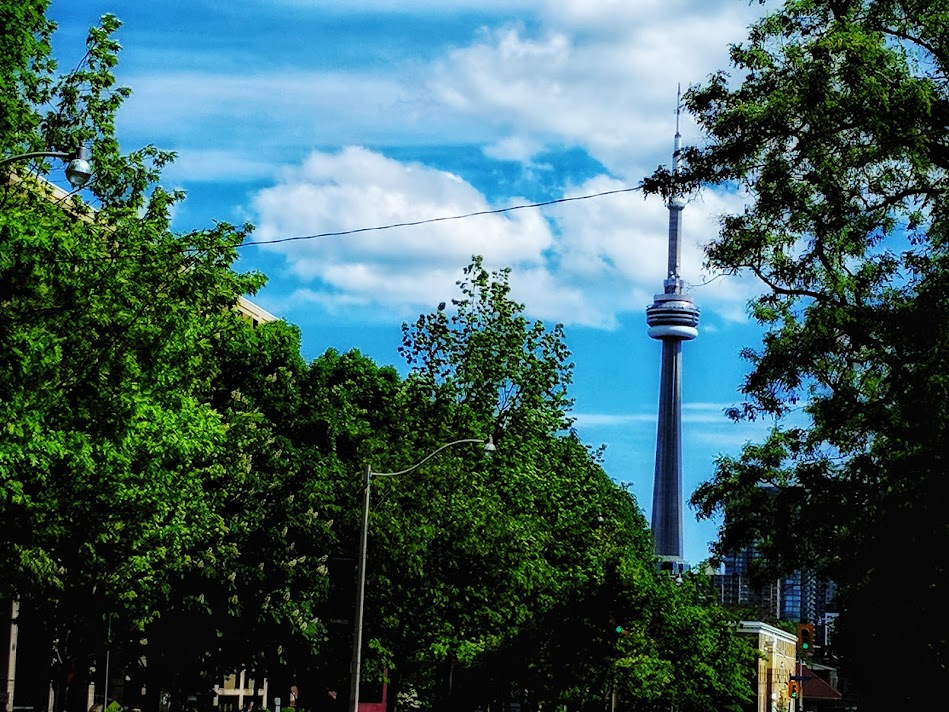 The CN tower from U of T